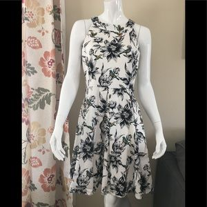 ✨EUC DB established 1962 floral bird dress✨